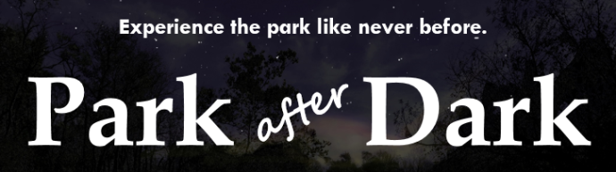 Park after Dark pic